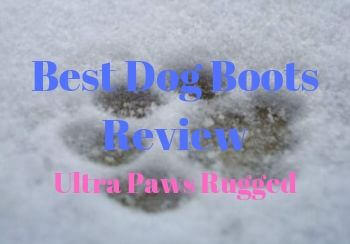 Best Dog Boots Review [Ultra Paws Rugged]