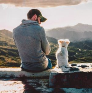 Man and small white dog sitting on rock looking out into the mountains.