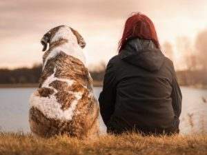 Tips For Bonding With Your Dog-11 Ways To Improve Your Connection