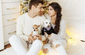 Best Christmas Gifts For Dog Owners, image of a couple with their 2 small dogs sitting in front of the Christmas tree.