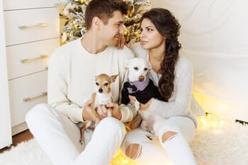 12 Best Christmas Gifts For Dog Owners [Holidays 2020]