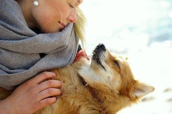 Blonde haired woman cuddling with her Corgi dog.