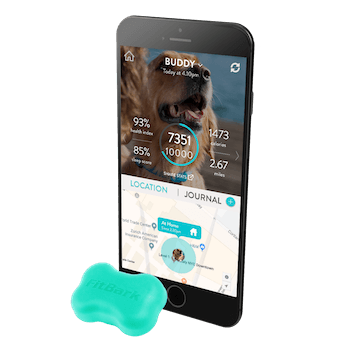 Gifts for dog dads - FitBark GPS All-in-One Dog Health and Location Tracker.